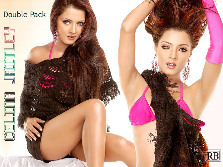 Celina Jaitley Rock Hair Style and Sexy Legs Pose Wallpaper