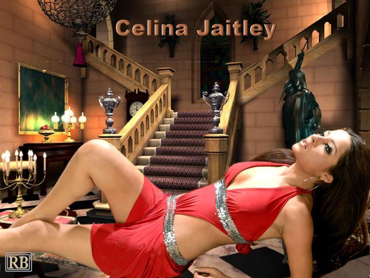 Celina Jaitley Spicy Pose Wallpaper