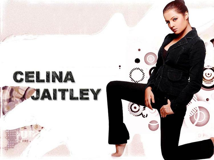 Celina Jaitley Stylist Wallpaper