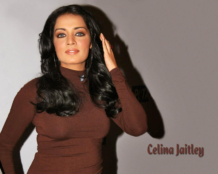 Hot Diva Celina Jaitley Wallpaper