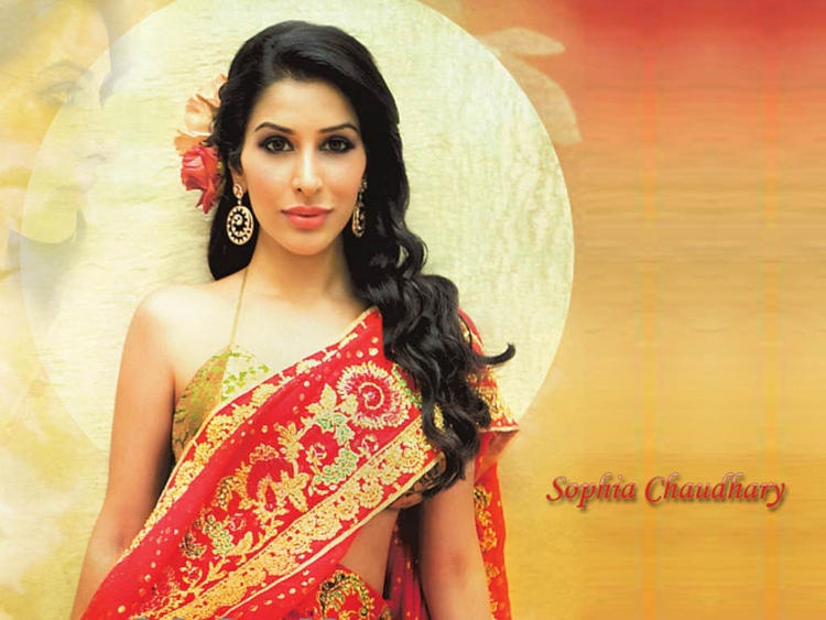 Sophia Chaudhary Gorgeous Look In Saree Wallpaper