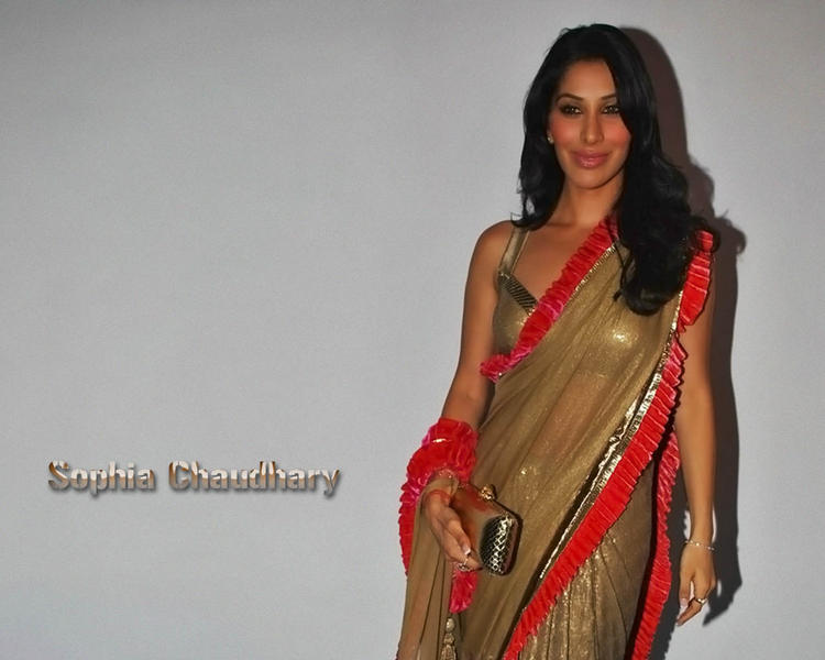 Sophia Chaudhary Sexy In Saree Wallpaper
