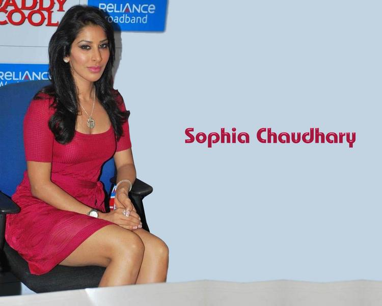 Sophia Chaudhary Sitting Pose Hot Wallpaper