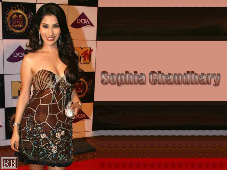 Sophia Chaudhary Strapless Dress Bold Wallpaper
