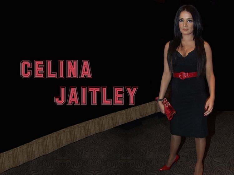 Celina Jaitley Black Dress Hot Wallpaper