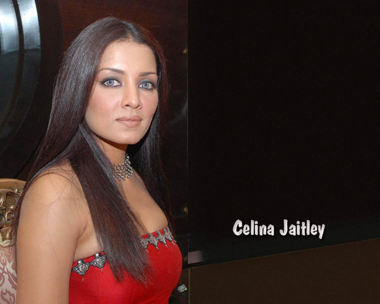 Celina Jaitley Cat Eyes Look Pic