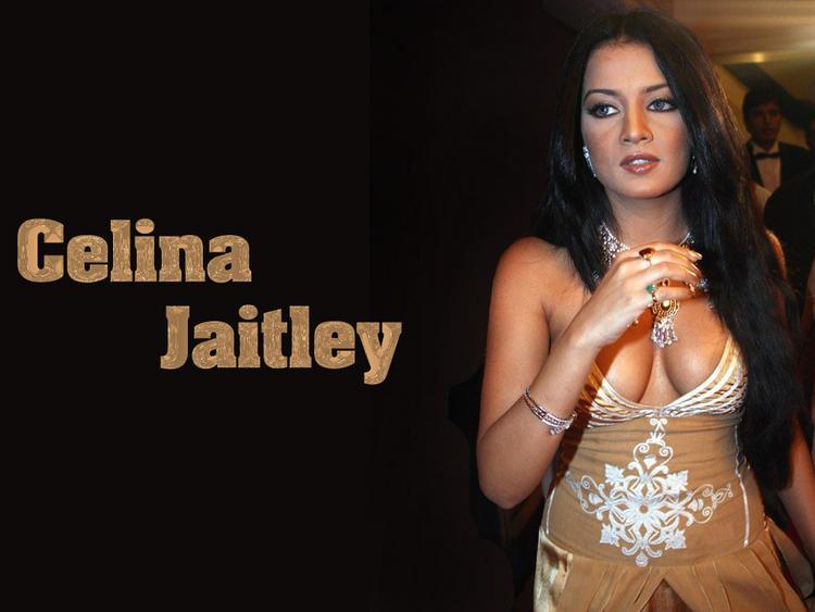 Celina Jaitley Glamour Boob Show Wallpaper