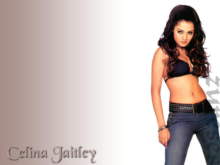Celina Jaitley Hot Navel Show Shocking Wallpaper