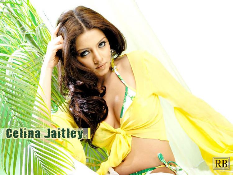 Celina Jaitley Hot Sexy Look Wallpaper
