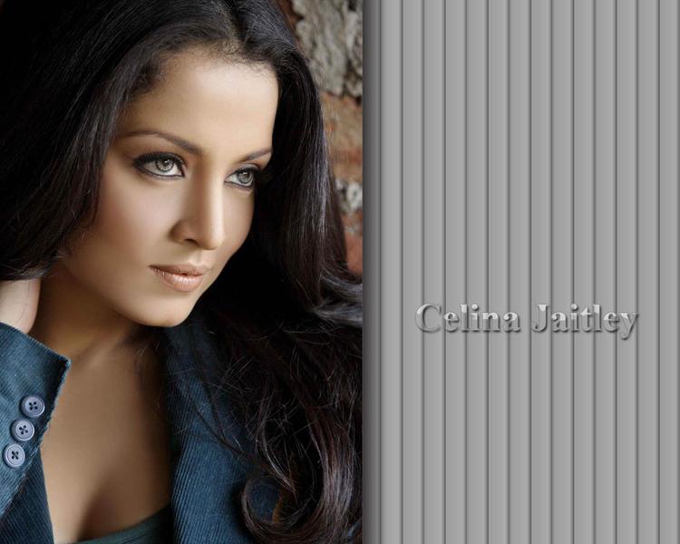 Celina Jaitley Sizzling Look Wallpaper