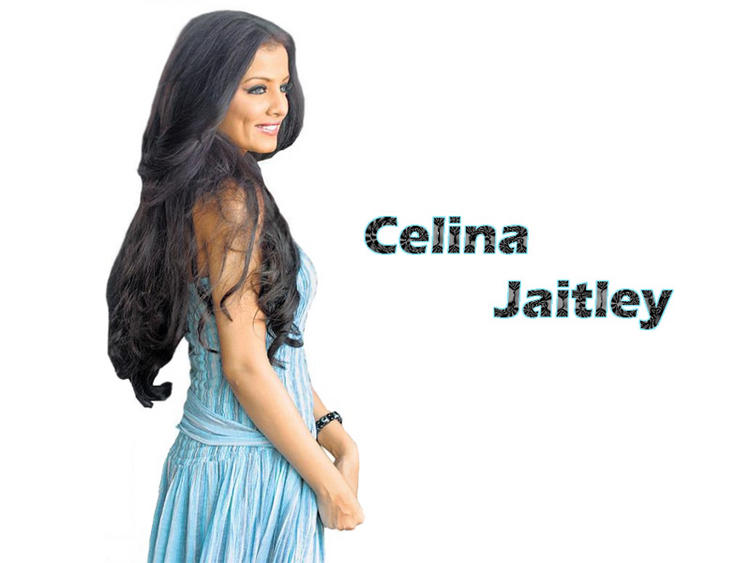 Celina Jaitley Stunning Wallpaper