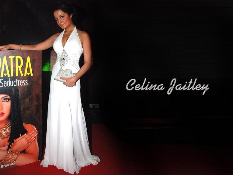 Celina Jaitley White Gown Still
