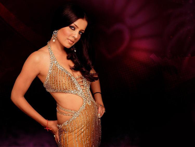Sexy Actress Celina Jaitley Wallpaper