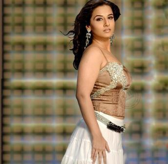 Vidya Balan Sizzling Hot Sexy Still