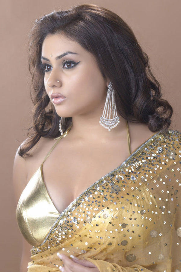 Namitha Gold Transparent Saree Wallpaper