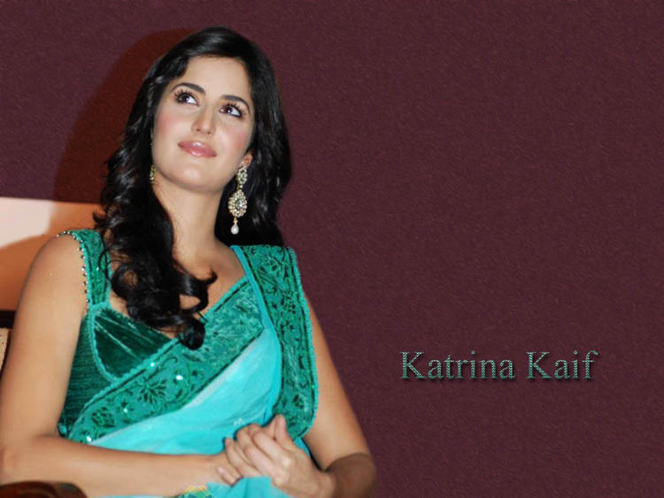 Katrina Kaif Beauty Wallpaper In Saree