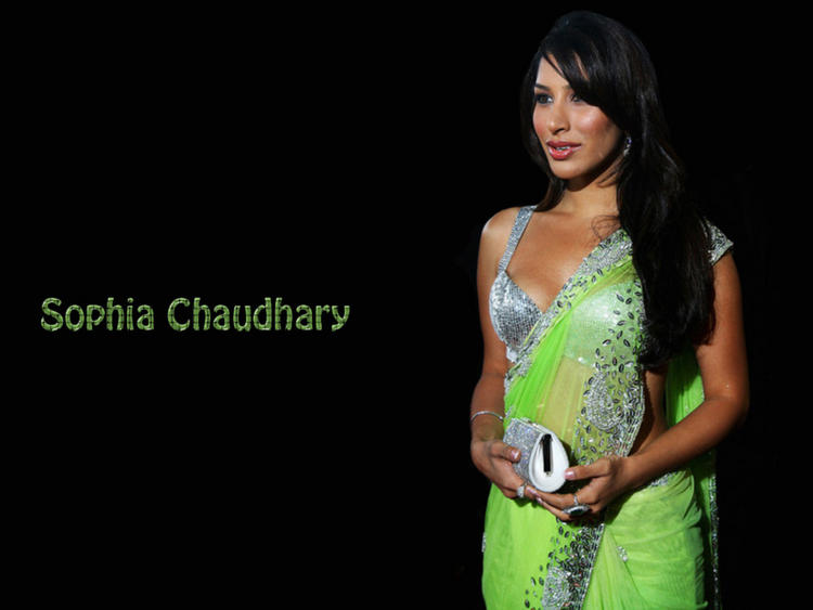 Sophia Chaudhary Green Saree Nice Wallpaper