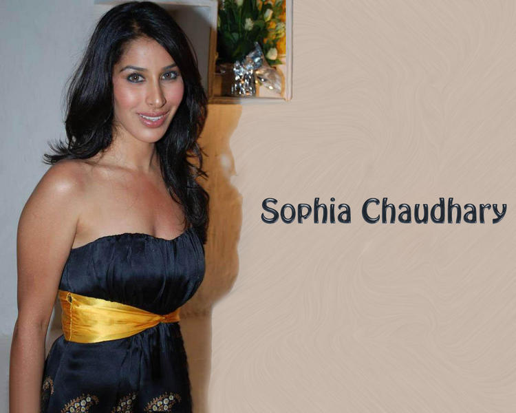 Sophia Chaudhary Strapless Dress Wallpaper