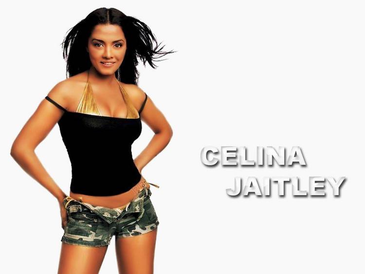 Celina Jaitley Bold Hot Wallpaper
