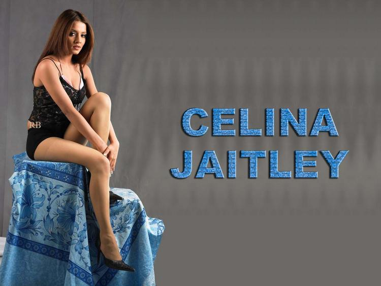 Celina Jaitley Expose Her Sexy Things