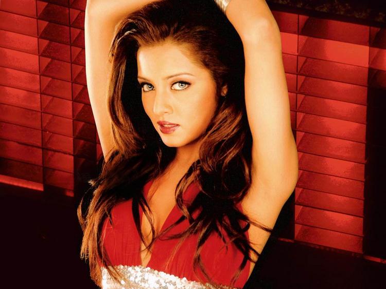 Celina Jaitley Hot Shocking Wallpaper