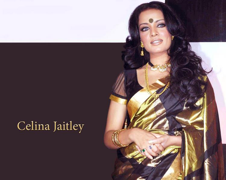 Celina Jaitley Hot Sweet Still In Saree