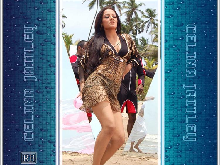Celina Jaitley Sexy Dance Exposing Wallpaper