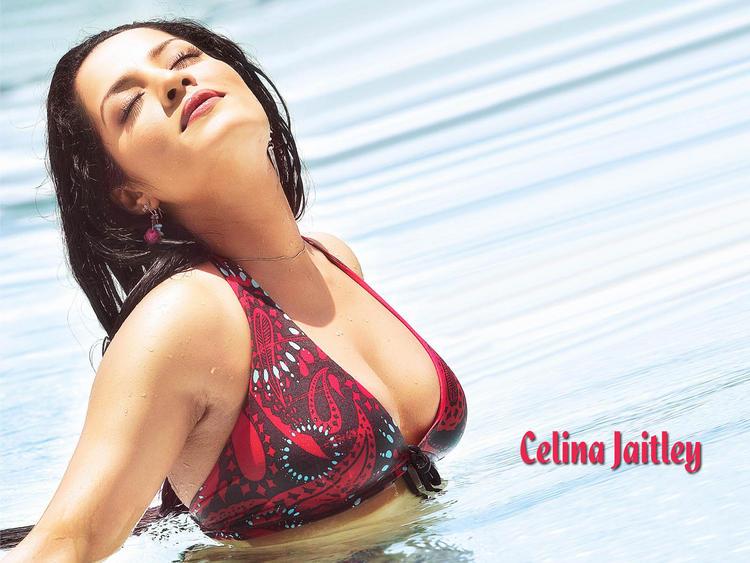 Celina Jaitley Wet Romancing Look Wallpaper
