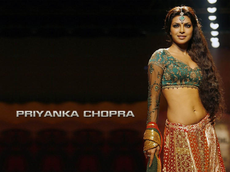 Priyanka Chopra Spicy Navel Exposing Wallpaper