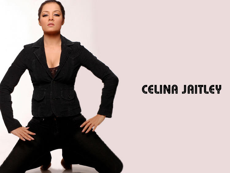Celina Jaitley Black Dress Hot Wallpaper