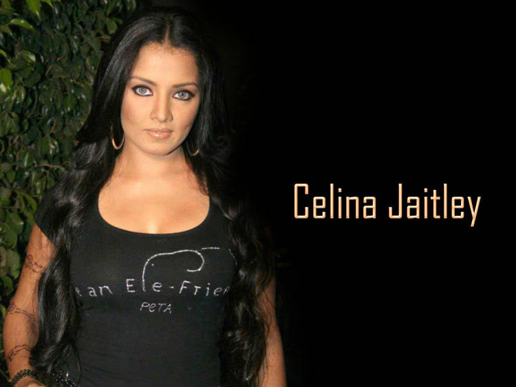 Celina Jaitley Dazzling Face Look Wallpaper