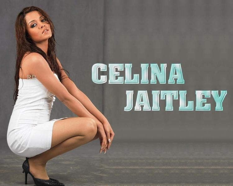 Celina Jaitley Modeling Pose Hot Wallpaper