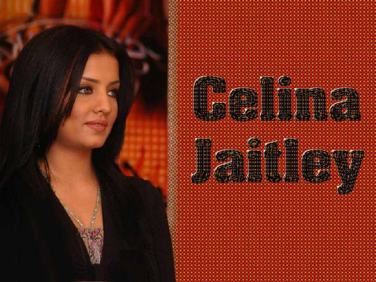 Celina Jaitley Side Face Look Wallpaper
