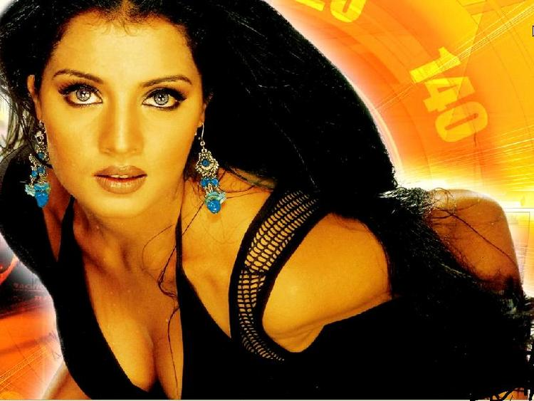 Celina Jaitley Stunning Face Look Wallpaper