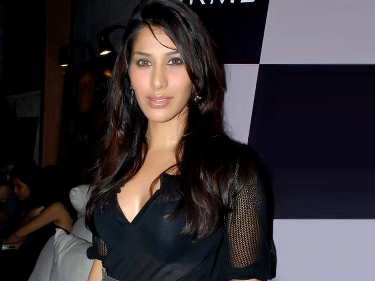 Sophia Chaudhary Looking Very gorgeous