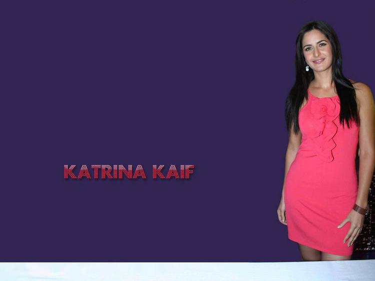 Katrina Kaif Rose Color Dress Wallpaper
