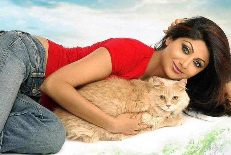 Shilpa Shetty Cute Wallpaper
