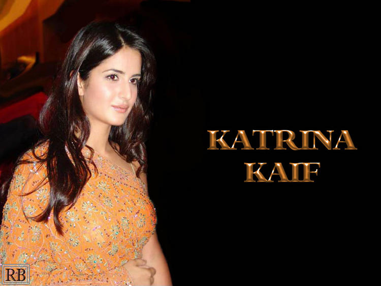 Katrina Kaif Gorgeous Wallapper In Saree