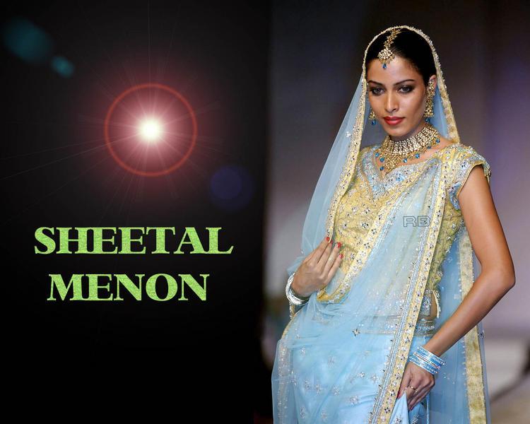 Sheetal Menon In Light Sky Saree Sexy Wallpaper