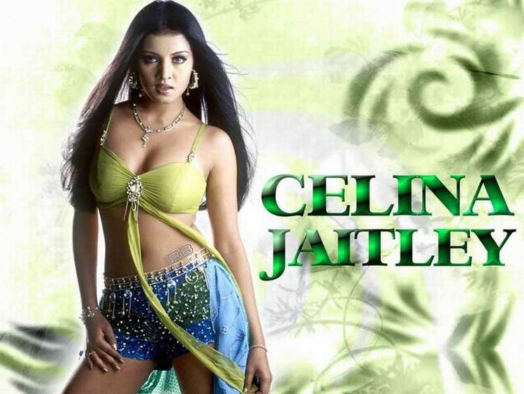 Celina Jaitley Rocking Look Wallpaper