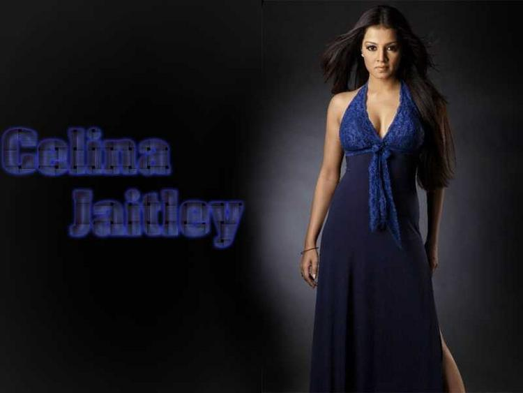 Celina Jaitley Rocking Wallpaper In Blue Gown