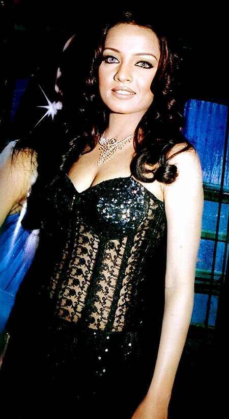 Celina Jaitley Sexy Dress Gorgeous Pic