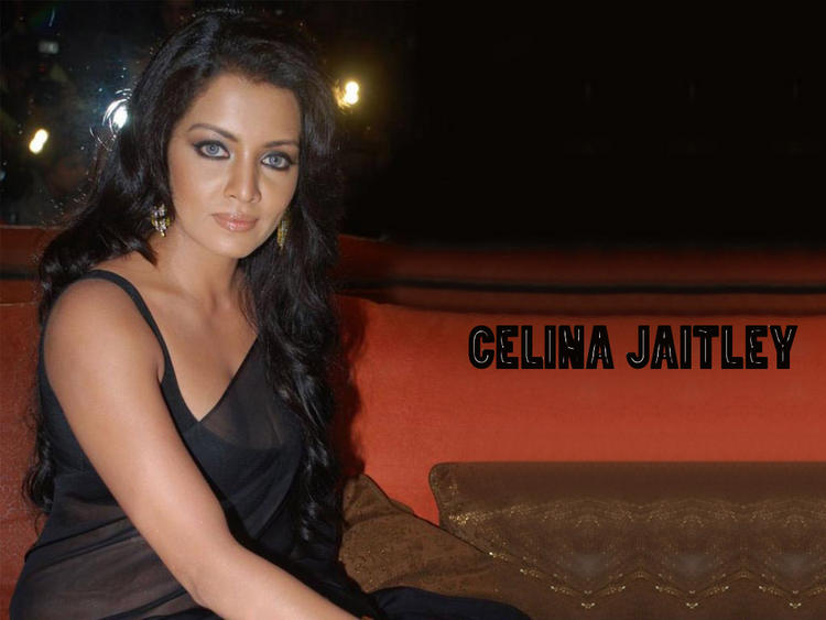 Bold Actress Celina Jaitley Wallpaper