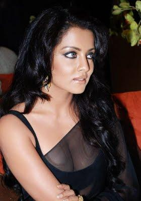 Celina Jaitley Sexy Boob Pic In Black Transparent Saree