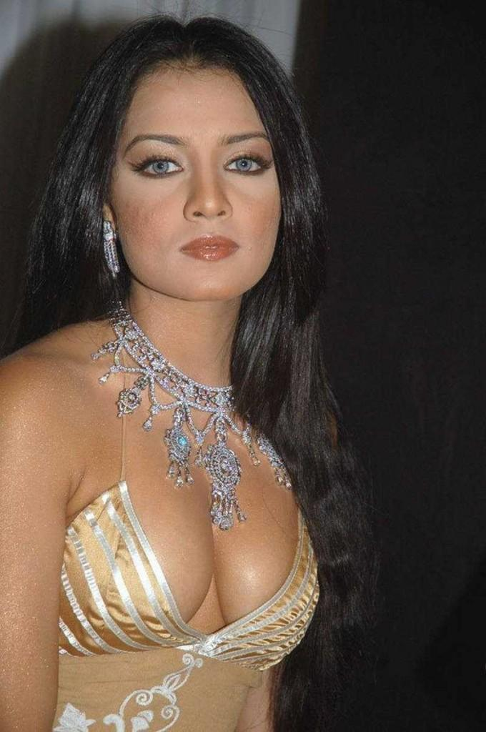Celina Jaitley Sexy Cleavages Show Hot Pic