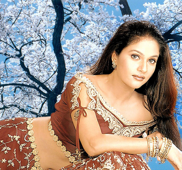 Gracy Singh Gorgeous Look Wallpaper