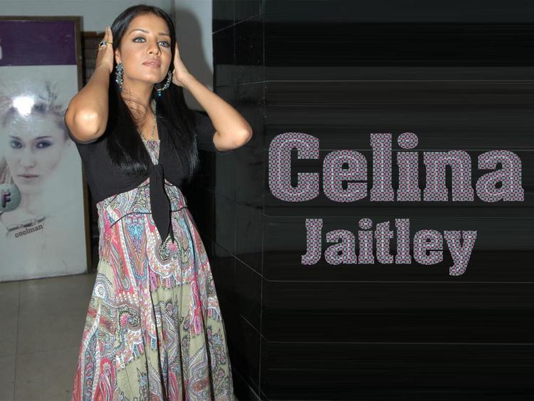 Celina Jaitley Hot Pose Wallpaper