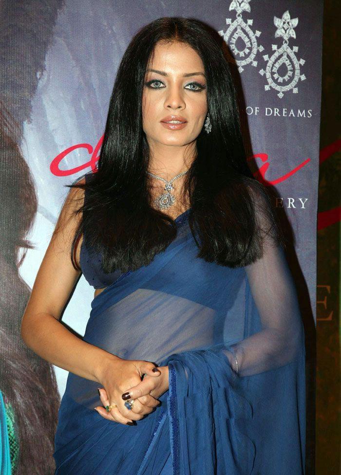 Celina Jaitley Looking Hot In Blue Transparent Saree