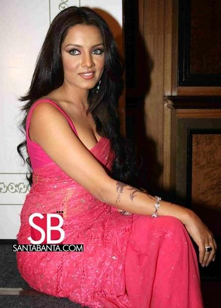 Celina Jaitley Looking Sexy In Pink Gorgeous Saree