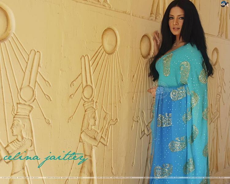 Celina Jaitley Sizzling Wallpaper In Saree